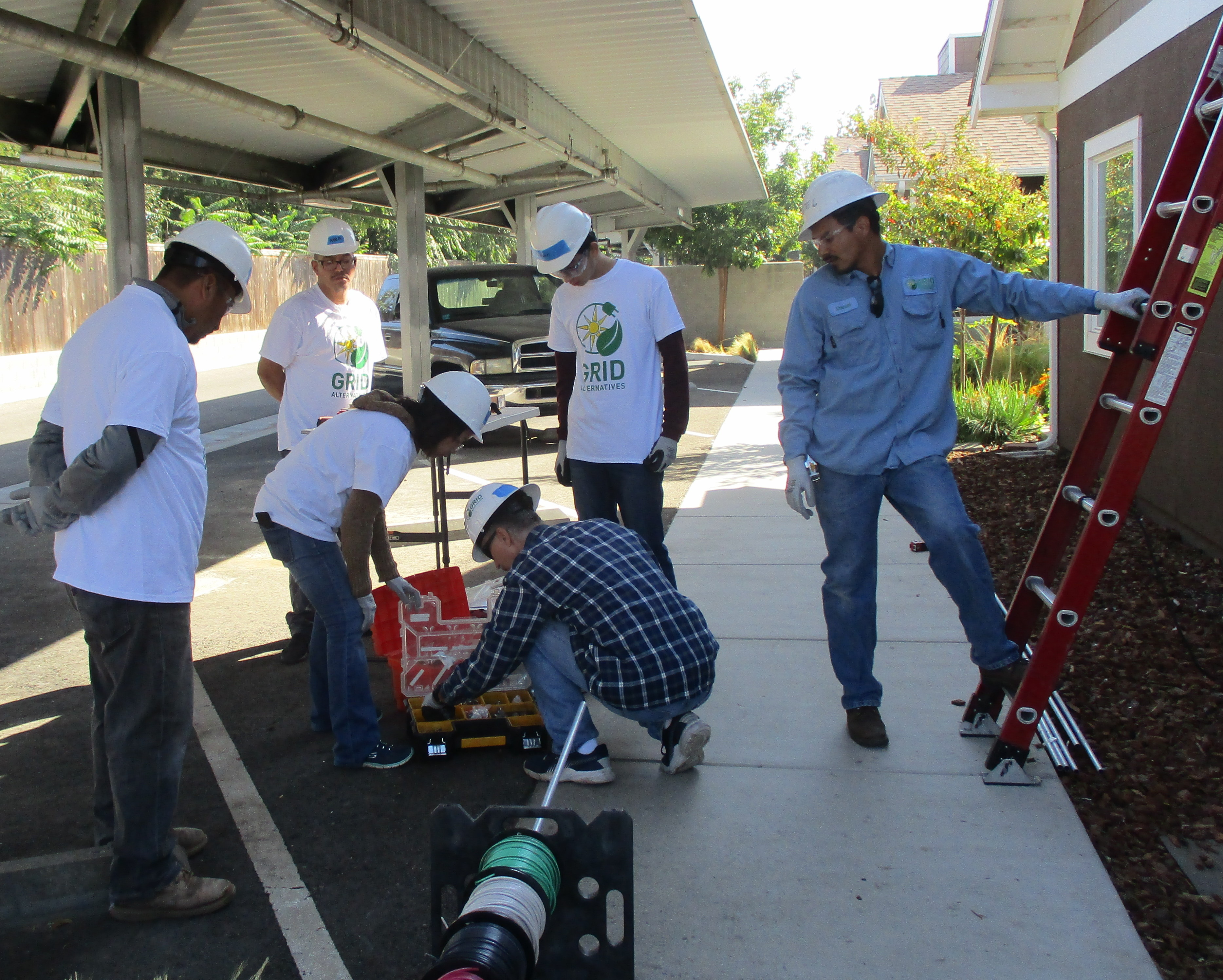 Volunteers on the ground with ladder