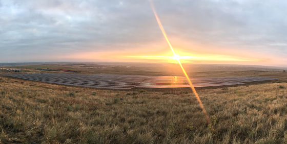 sunrise over a large community solar garden