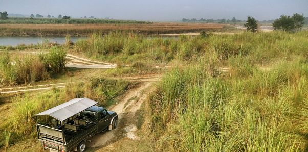 A view of Chitwan National Park